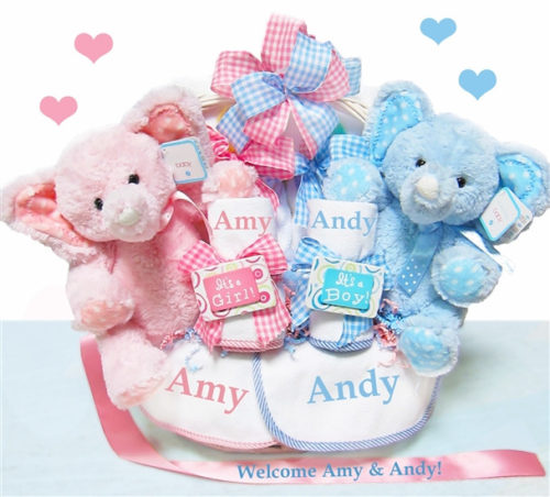 Double The Babies & Blessings Twins Baby Gift Basket