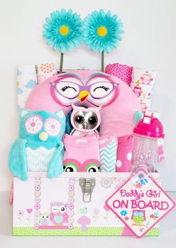 Owl Eyes Baby Girl Gift Basket