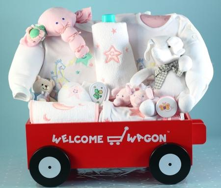 Moon & Stars Deluxe Welcome Wagon Baby Girl Gift Basket